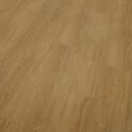 3035 Chestnut Oak